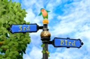 3rd & Bird Sign