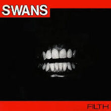 Duurrrty swans
