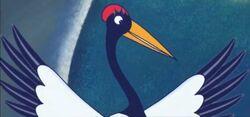 Cassandra the Crane
