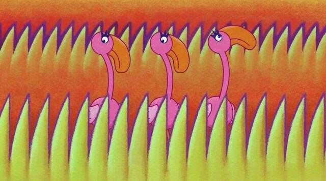File:Flash Flamingos.jpg