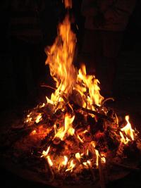 Campfire Pinecone