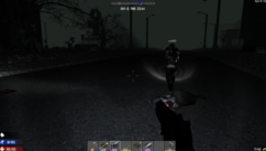 Night hunt2