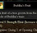 Buddha's Fruit