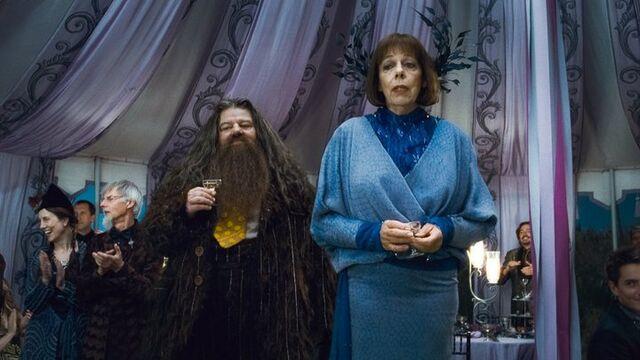 File:Rubeus Hagrid Olympe Maxime D H Wedding 1.jpeg