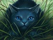 Bluestar-warrior-cats-of-pantherclan-28228378-1024-768