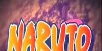 Naruto The Rebridged Series