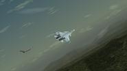 Su-37R and Fii