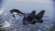 F-14B Tomcat over Tokyo