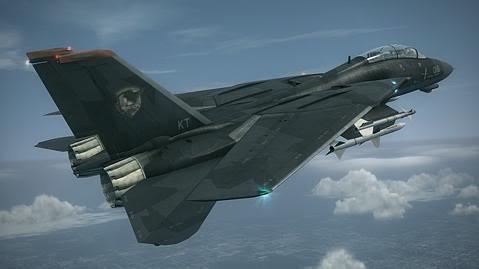 File:F-14D -RAZGRIZ-.jpg