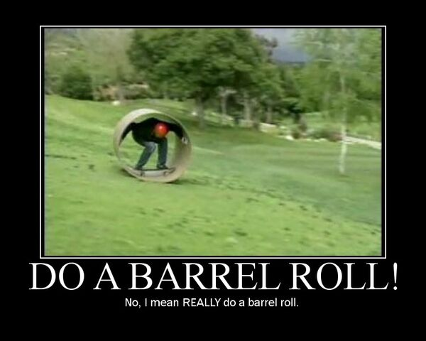 File:No, I mean REALLY do a barrel roll.jpg