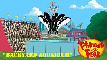 Backyard Aquairum Snapshot