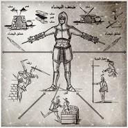 Zw-codex-13