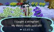 Stringfish Catch2