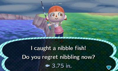 File:Nibble Fish.JPG