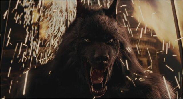File:Aiden WolfForm2.jpg