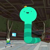 Kingworm