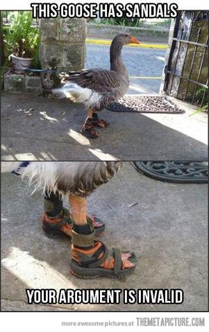 File:Funny-swan-sandals-foot.jpg