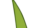 Grass Sword