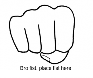 File:Lol bro fist.png