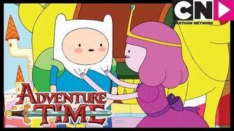 Adventure Time Best of Princess Bubblegum Cartoon Network