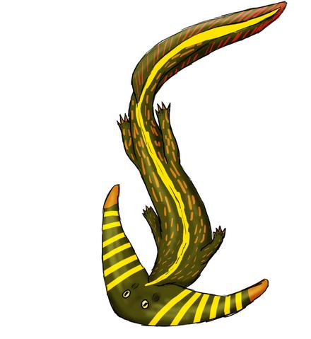File:Diplocalus.png