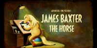 James Baxter the Horse