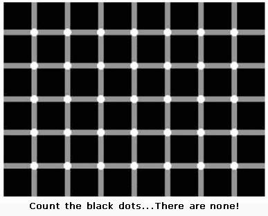 File:No Black Dots Lol!!!O o.jpg