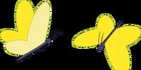 Butterfly (Still)