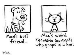 File:Man's Best Friend.jpg