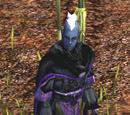 Rizzen's Armor