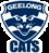 2010 Logo Geelong