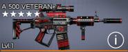 A 500 Veteran 5 star