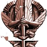BronzeRaidBadge