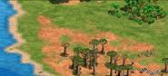 Madagascarlandscape