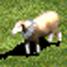 Sheep-icon-aoe2.jpg