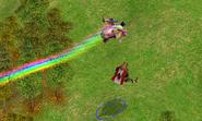 Rainbowhippow