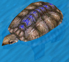 File:War Turtle.jpg