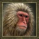 SnowMonkey icon