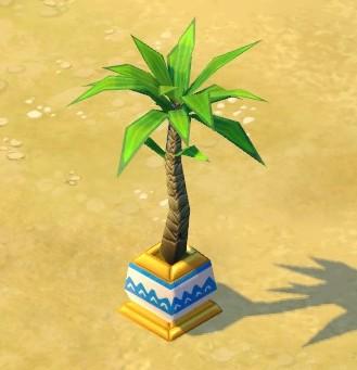 File:Tall palm.jpg