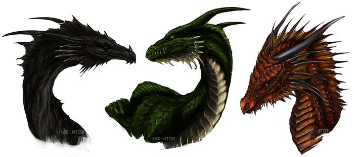 Age of fire dragon trio by isvoc-d7zqvk5