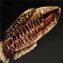 File:Leaf Fish.png