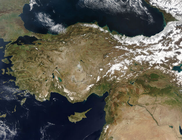 File:Turkey.jpg