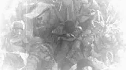 Warhammer 40k The Imperial Propaganda