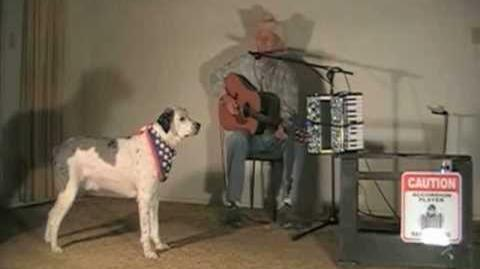 America's Got Talent Pup YouTube Audition