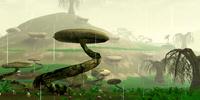 Swamp Sector