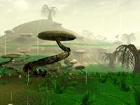 Img swamp