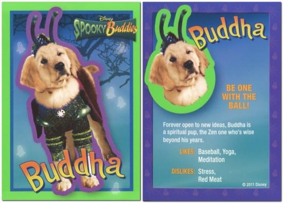 File:Normal Buddha s.jpg