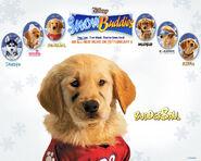Snow buddies budderball