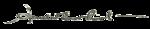 150px-Amelia Earhart (signature)