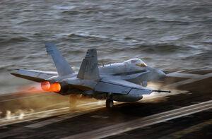 FA-18 Hornet (1)